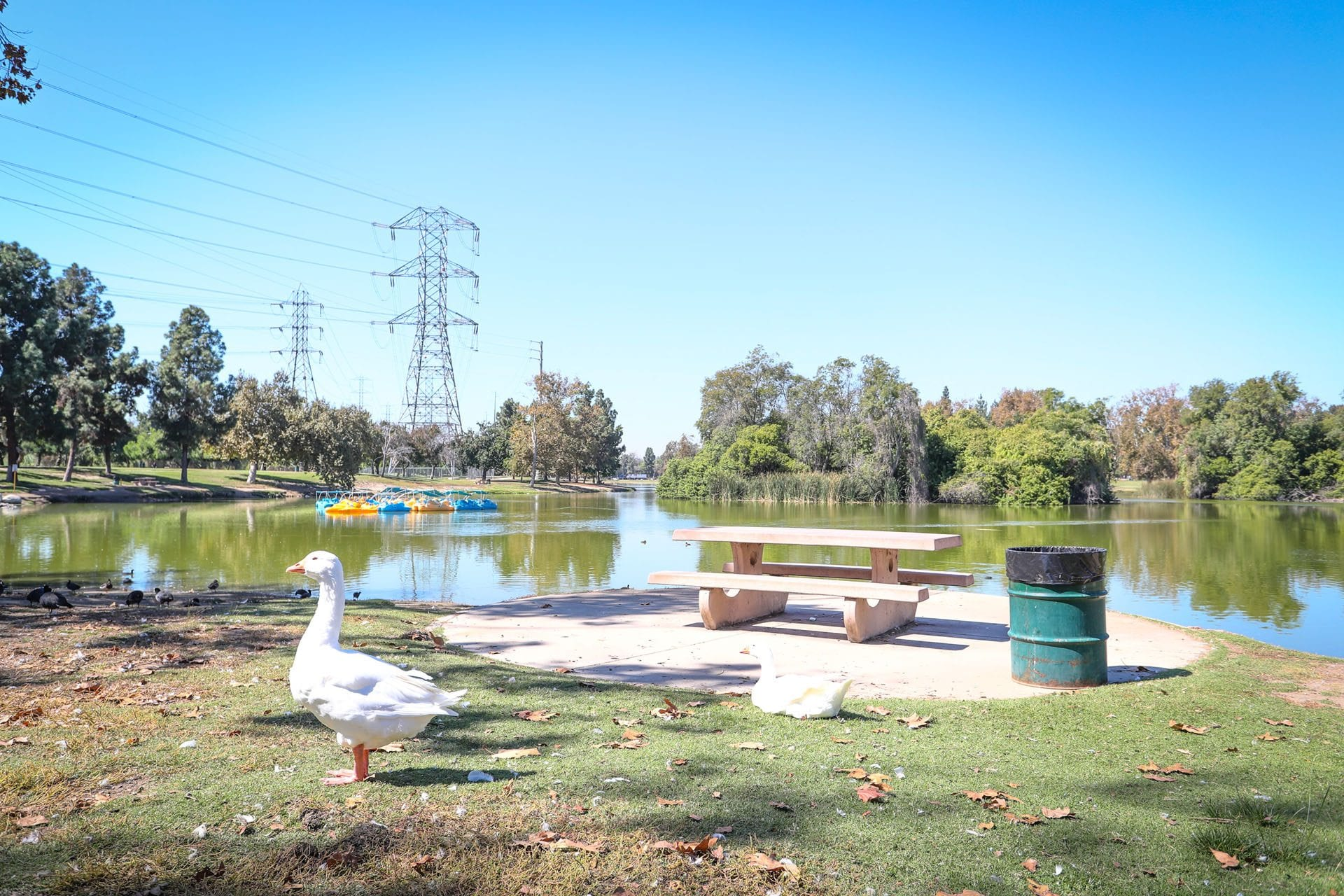 Whittier Narrows Recreation Area Parks Amp Recreation
