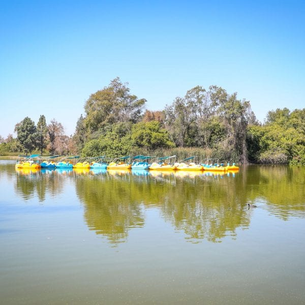 Lake with paddle boats