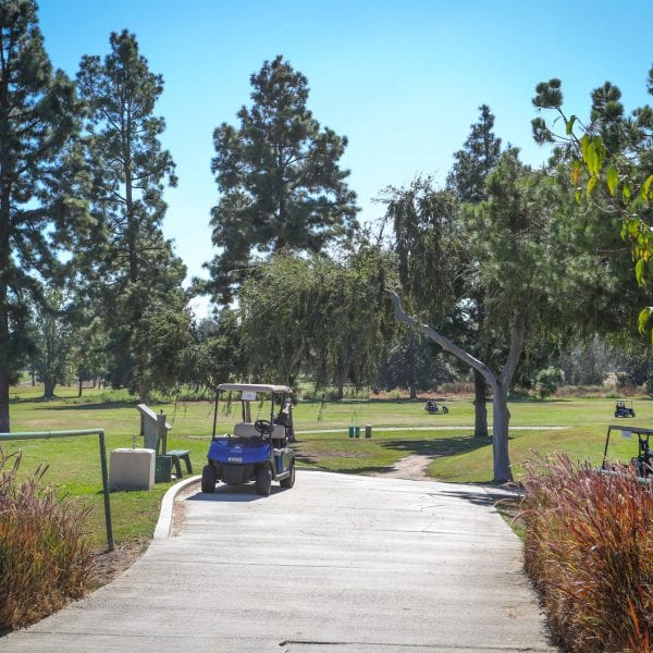 Golf carts on a paved path running through a field with trees