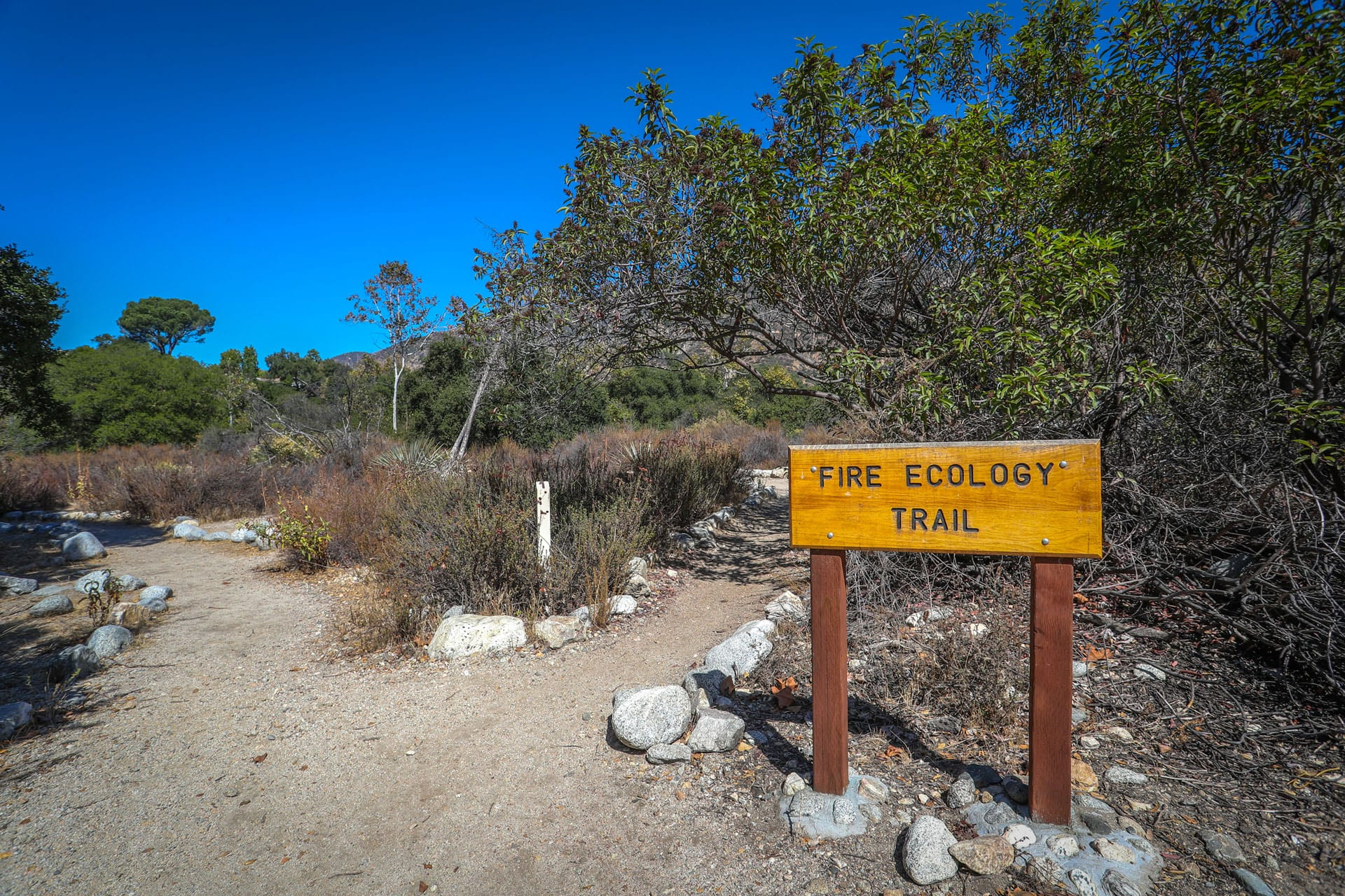 Fire Ecology Trail sign
