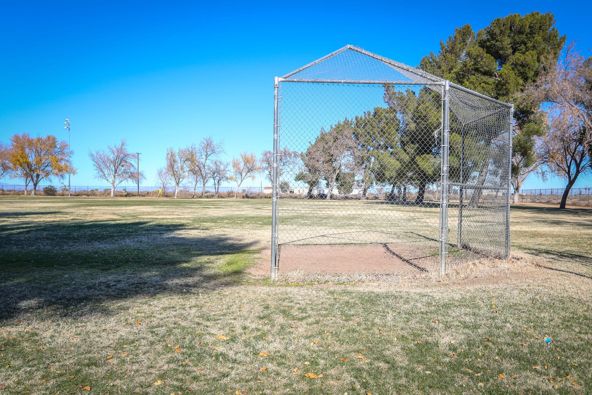 Net on baseball field