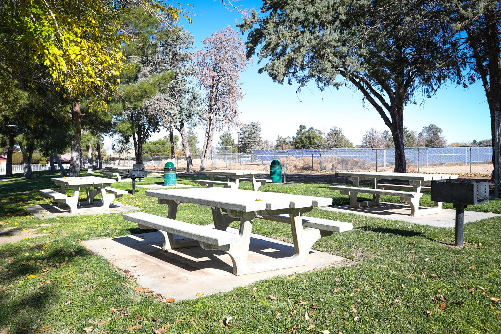 Picnic tables and trash cans in the park