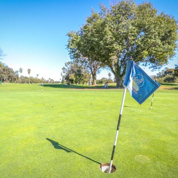 Blue hole flag