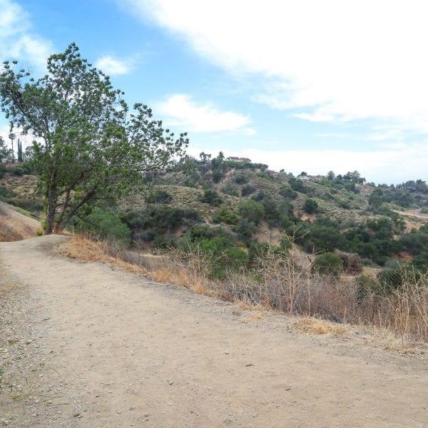Trail on hillside