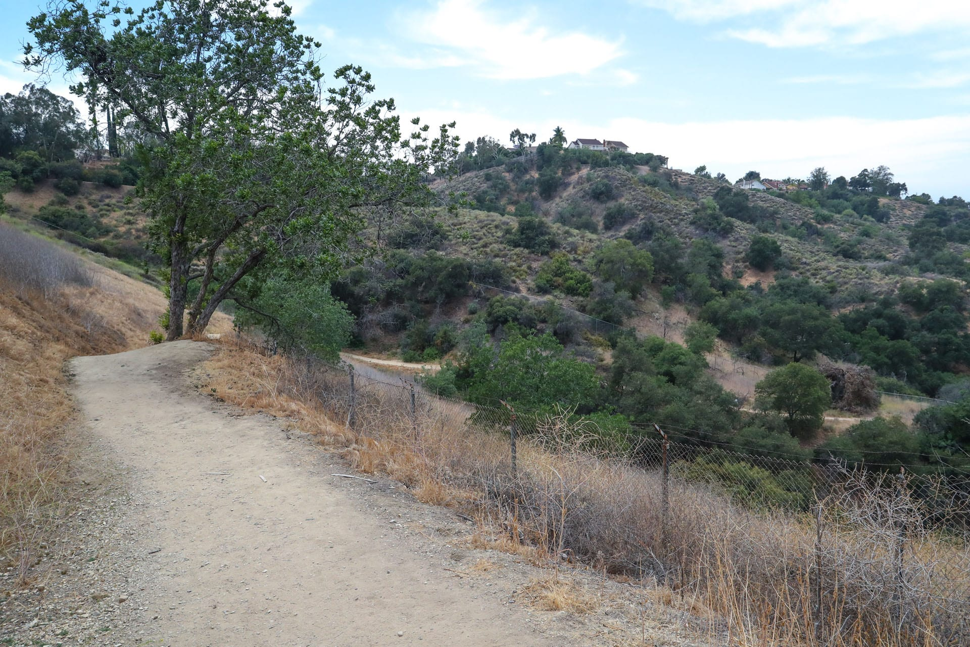 Trail on hillside