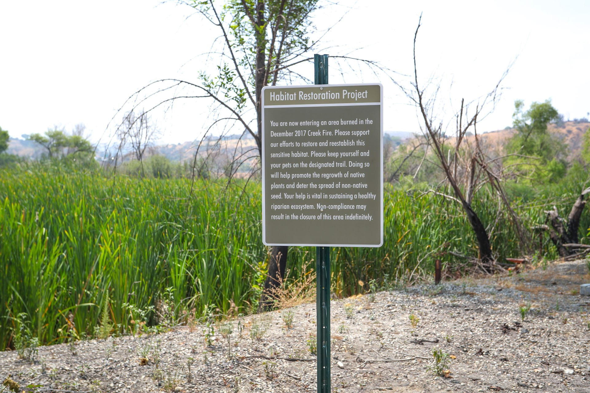 Habitat Restoration Project sign amongst the tall grass