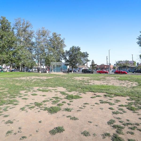 Grass, dirt and baseball net