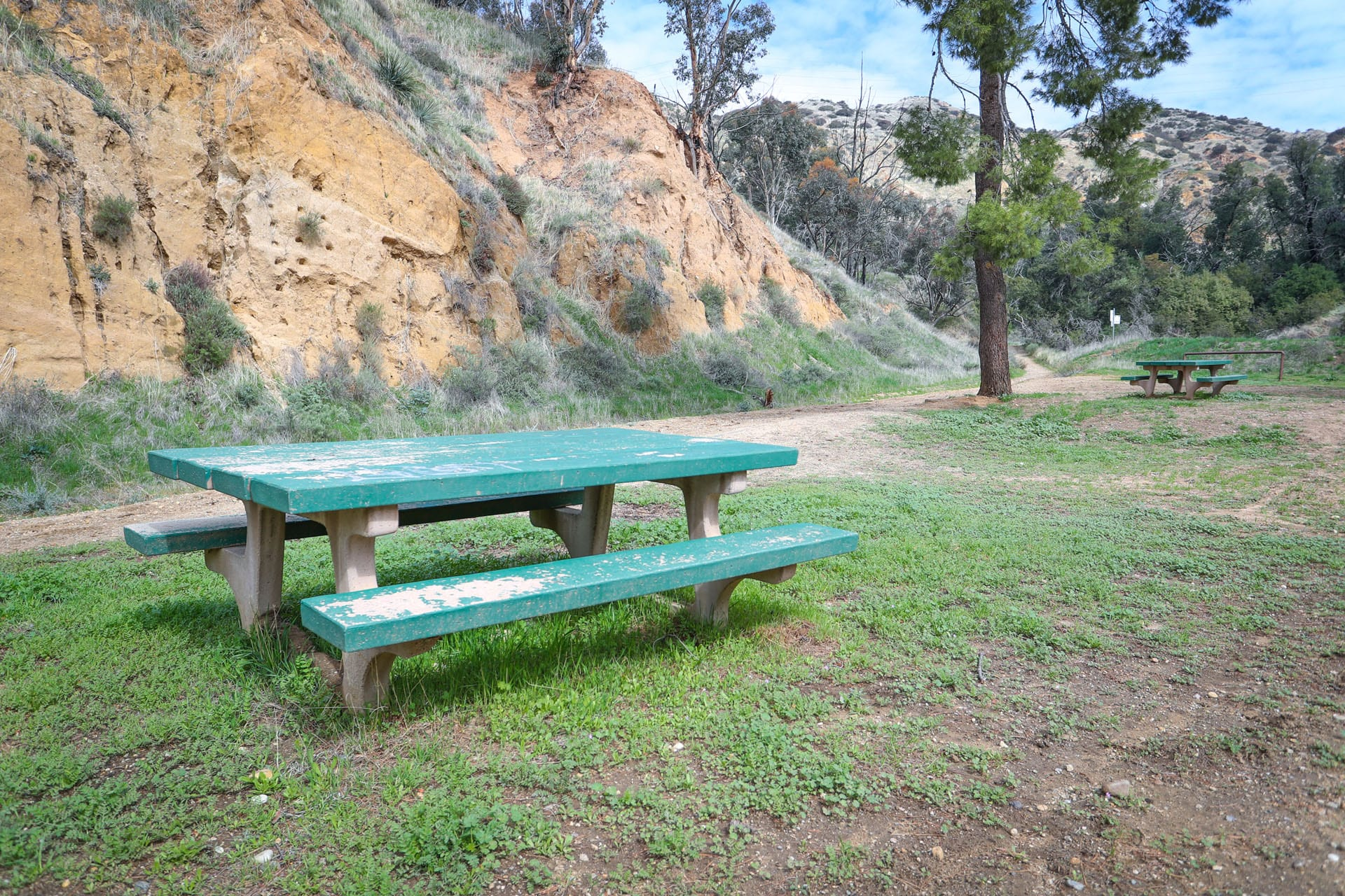 Picnic table with hill and tree in the background