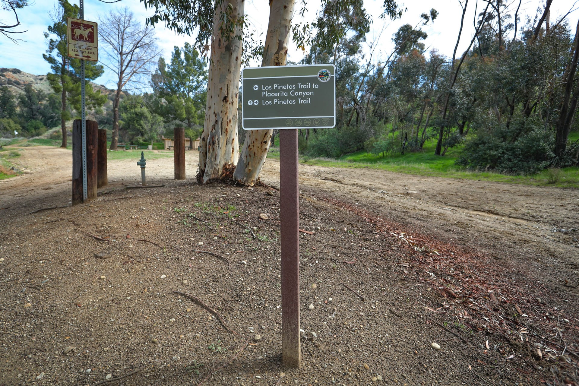 Directional sign among trees and a dirt paths