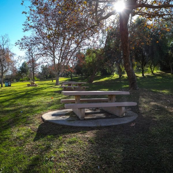 Picnic tables in a lawn amongst trees