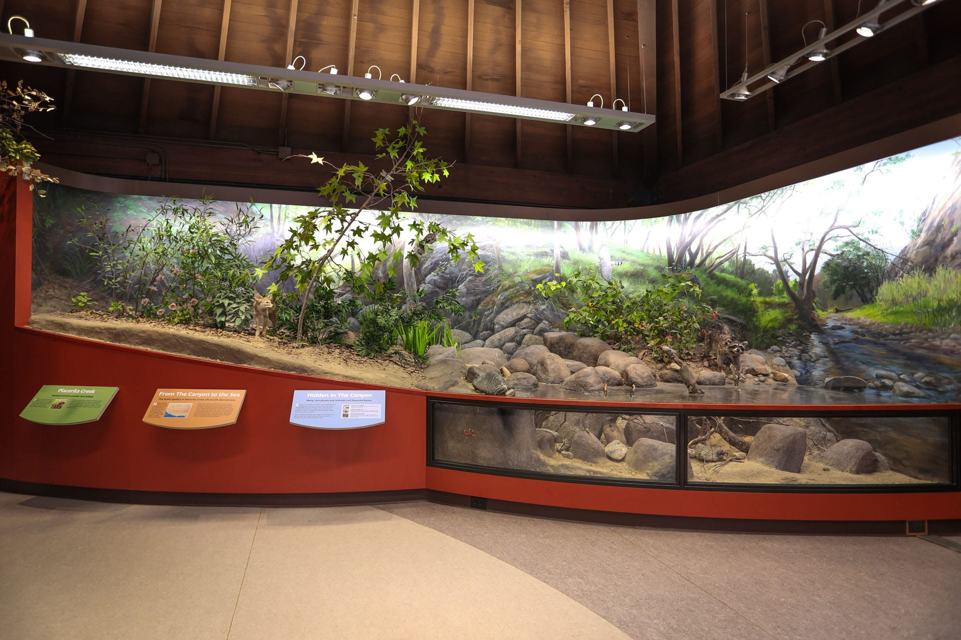 Exhibit of river life