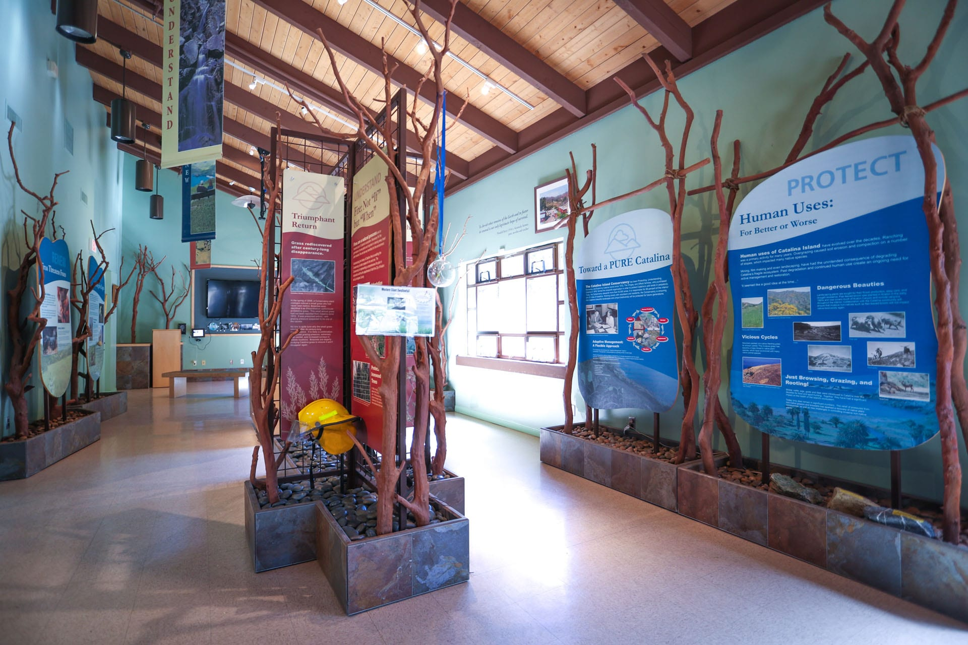 Informational displays in the nature center