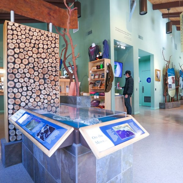 Exhibits in the nature center