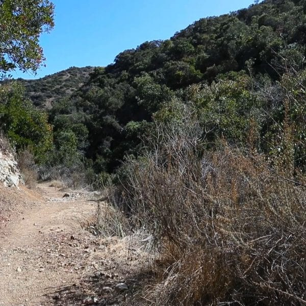 Dirt trail in the hills