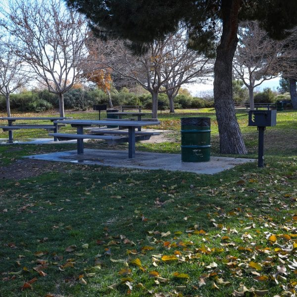 Picnic tables, BBQ grills and trash cans under a tree surrounded by a lawn