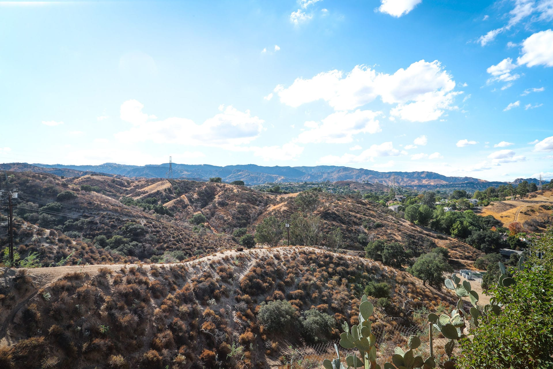 View of hills from the cacti