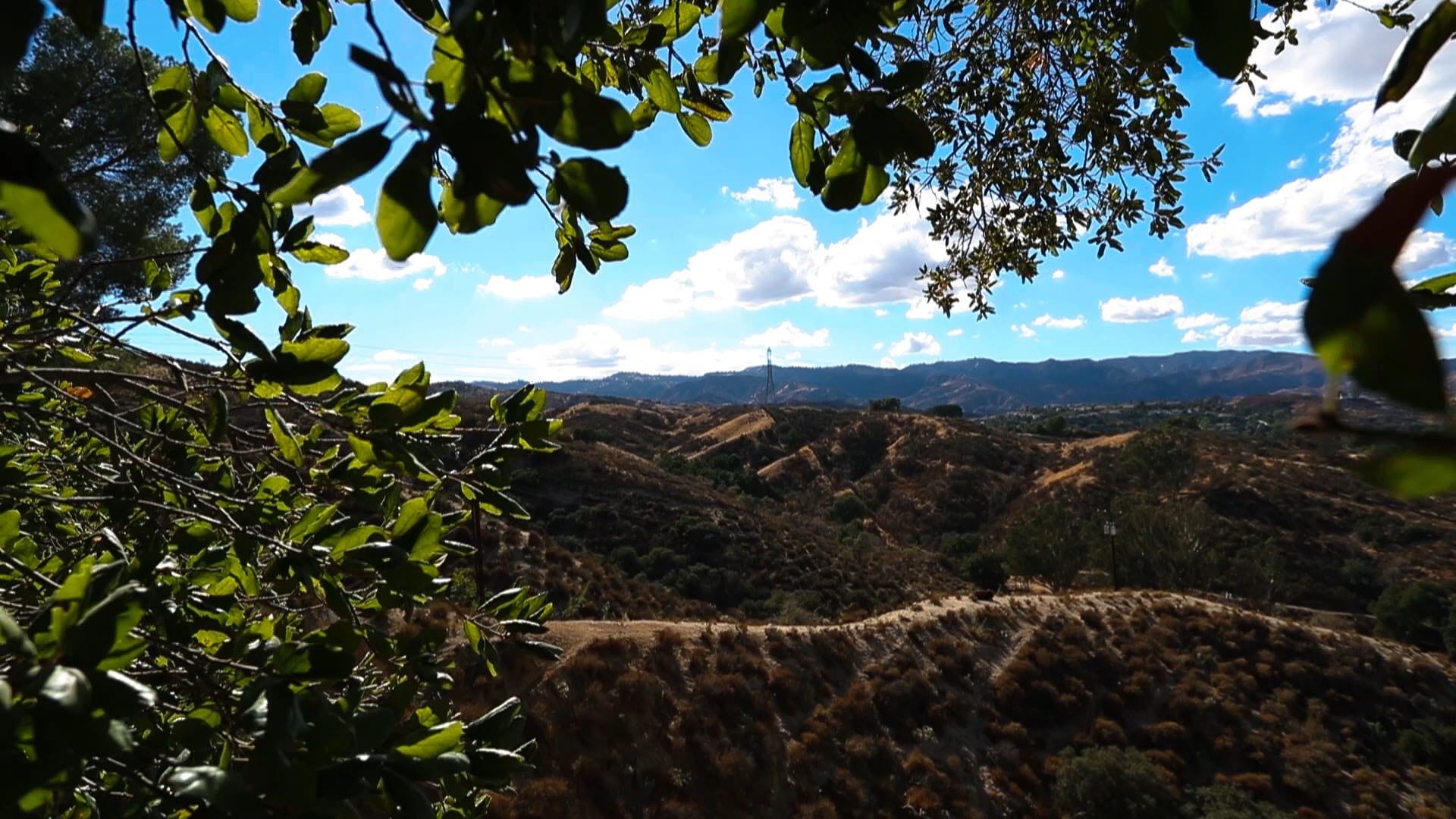 View of hills from the trees